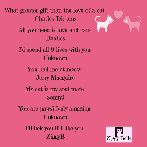 Ziggy Belle Valentines Day Quotes