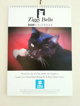Load image into Gallery viewer, Ziggy Belle 2020 Calendar - Ziggy Belle