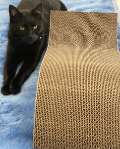 S Curve Cat Scratcher by Scream - Ziggy Belle