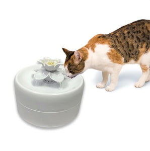 *NEW* Magnolia Pioneer Cat Fountain 1.62lt - Ziggy Belle