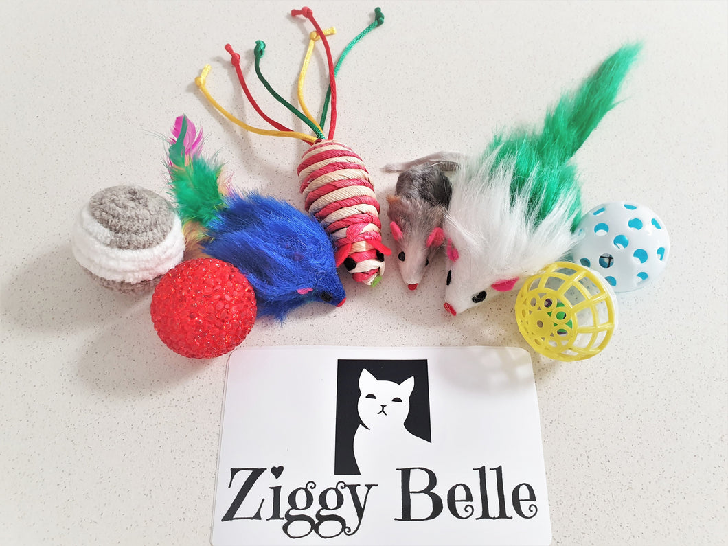 Set of 10 Interactive Cat Toys - Ziggy Belle