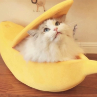 Kitty Cat Banana Bed - Ziggy Belle