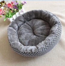 Load image into Gallery viewer, Pawz Road Funky Cat Beds - Ziggy Belle