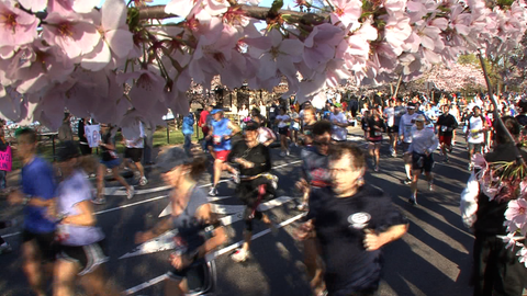 10028R - RUNNERS BY CHERRY TREES SPRINGTIME