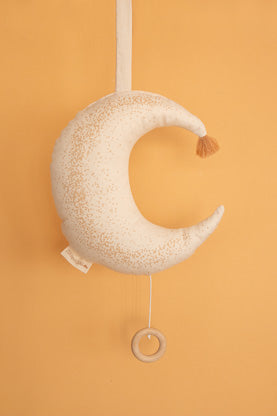 Natural Toys Store sells organic cotton toys like this beautiful musical cushion for babies online. Make a ecological gift!