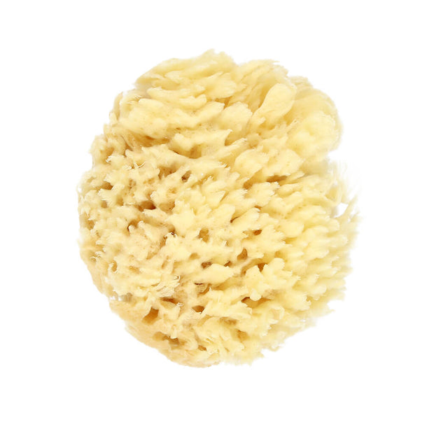 Nilo Baby Natural Sea Sponge - nini & loli