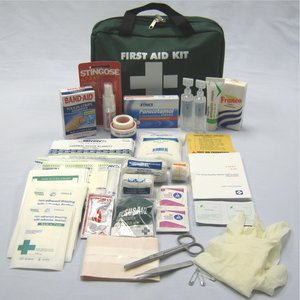 Portable Travel First Aid Kit - Large