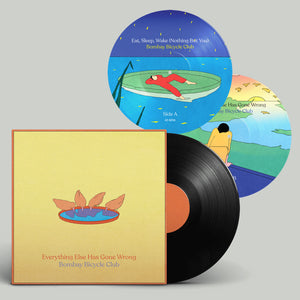 "Everything Else Has Gone Wrong (Standard LP) + 7"" Picture Disc"