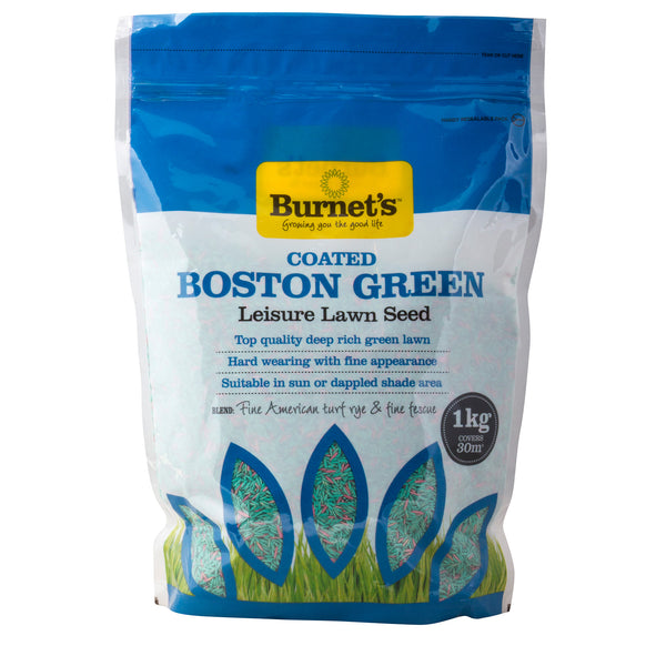 Boston Green Lawn Seed - Grass Seed