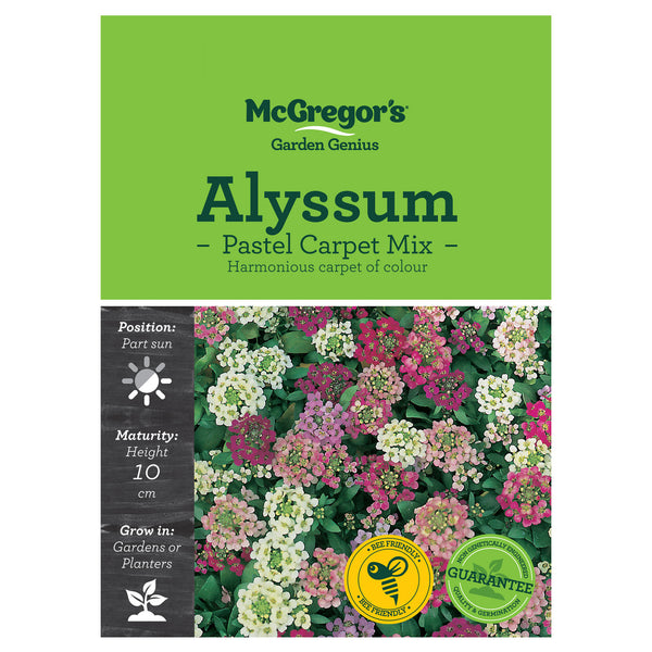 Pastel Carpet Alyssum Mix Seeds - Flowers