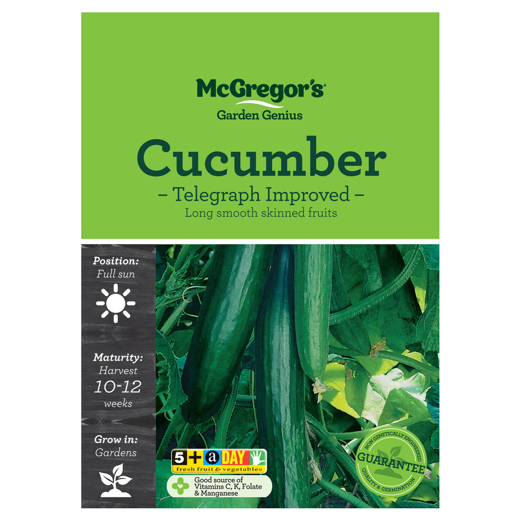 Improved Telegraph Cucumber Seeds - Vegetable