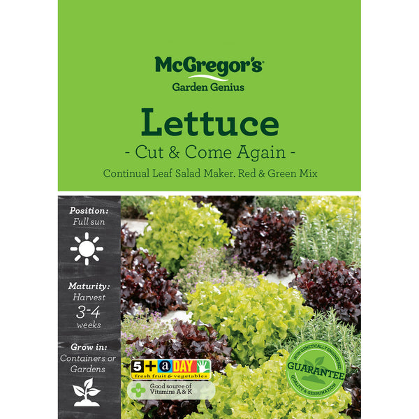 Lettuce Seed - Cut and Come Again