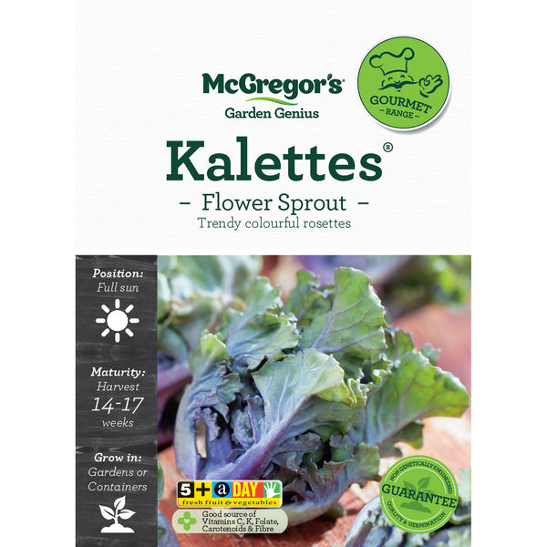 Kalettes Seed - Flower Sprout Gourmet