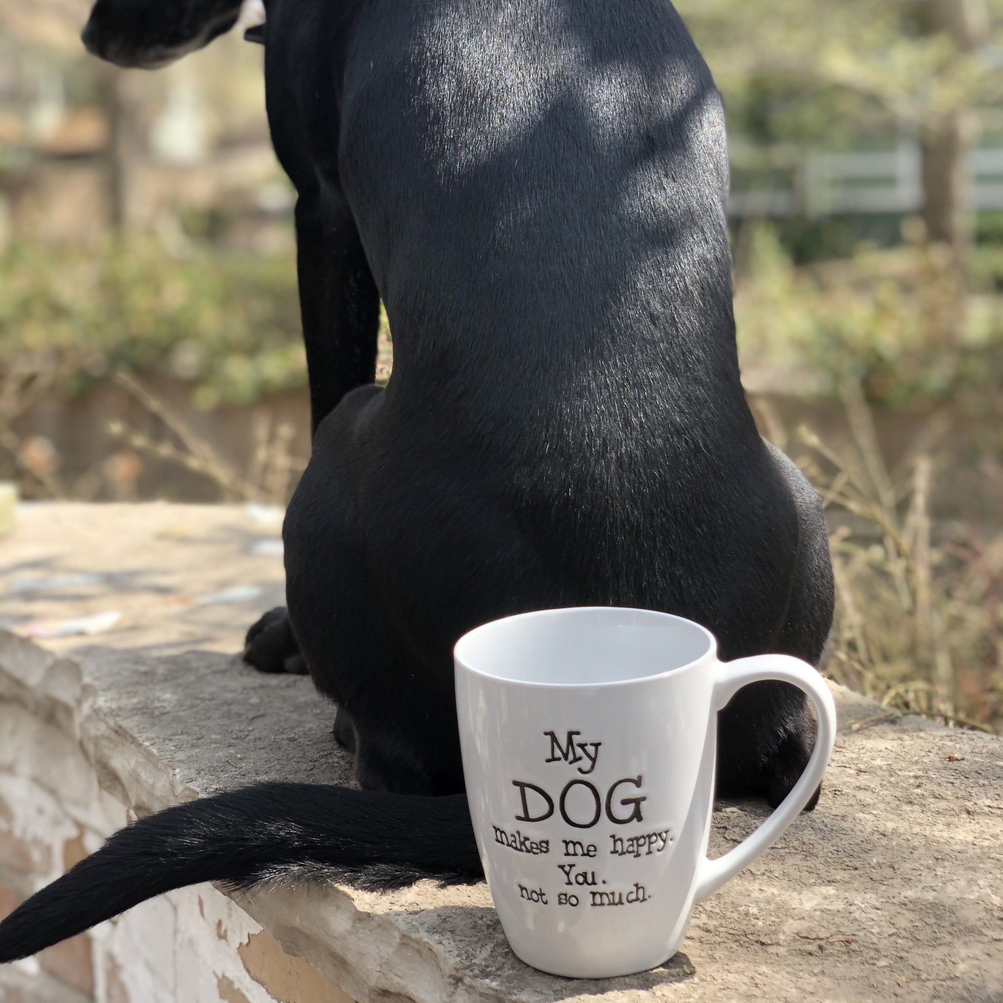 Dog Mugs - Inspired Evanston