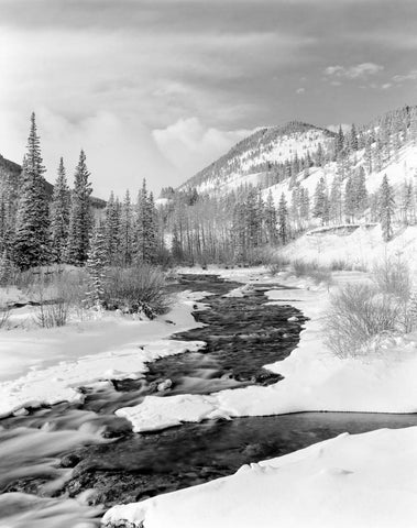 Confluence, Little Elbow River, 1985