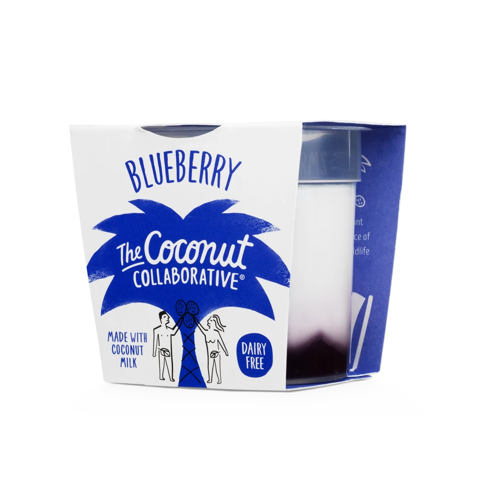 Blueberry Coconut Yog