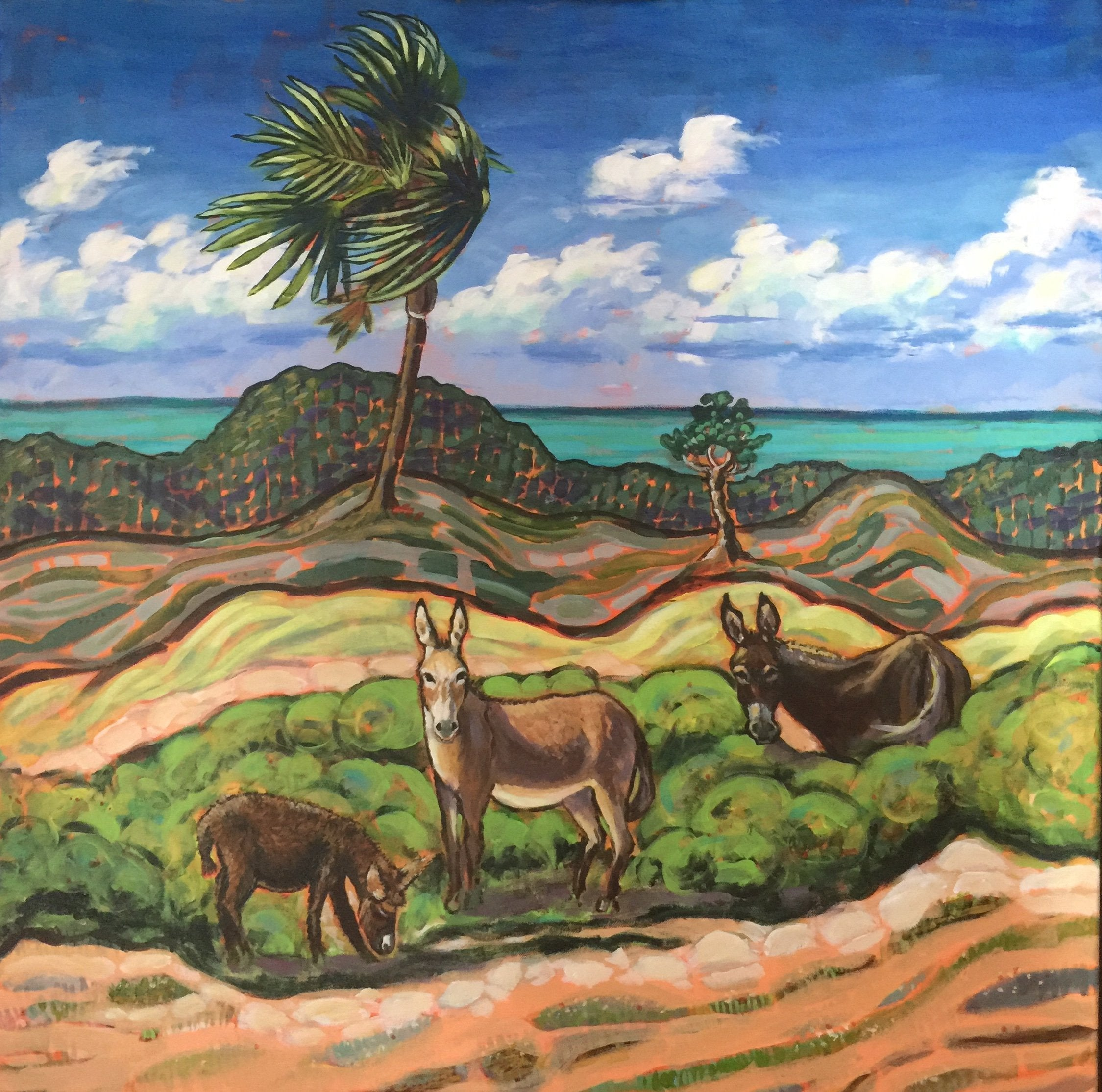Donkeys and Palms, South Caicos
