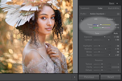 How to Edit Skin Tones in Lightroom with Mastin Labs Presets
