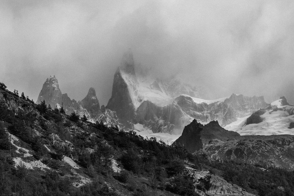 monochrome landscape photo of a mountainside with trees dominating the front and a peak visible towards the back