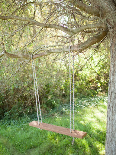 picture of a wooden swing hanging from a tree showing how chromatic aberration shows up on an image