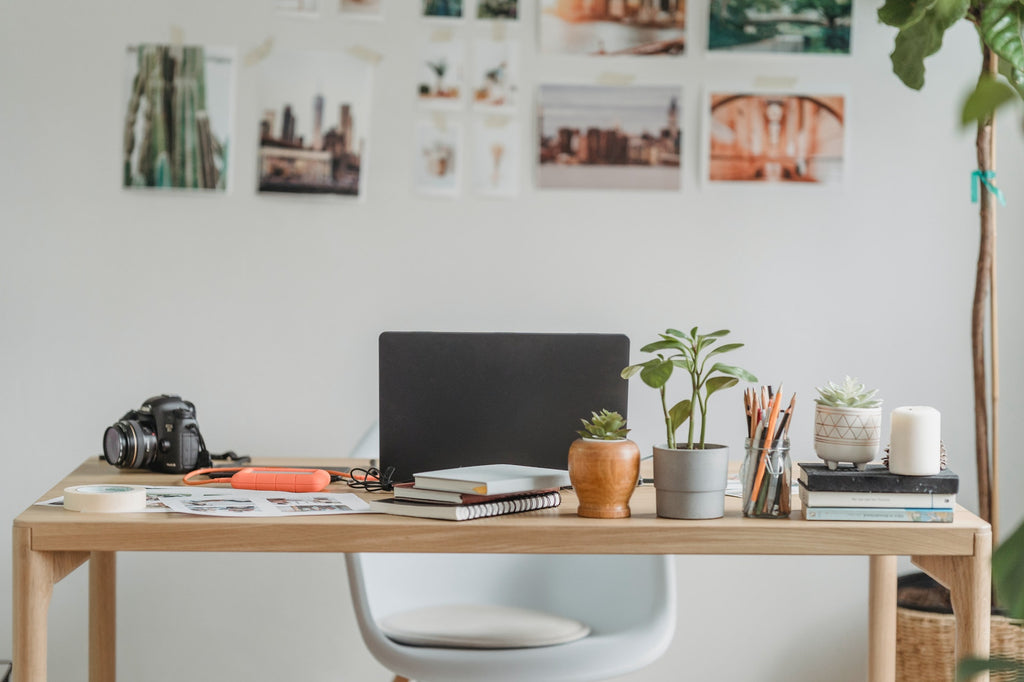 A computer, notebooks, plants, and a camera sitting on a desk with pictures on the wall in the background.