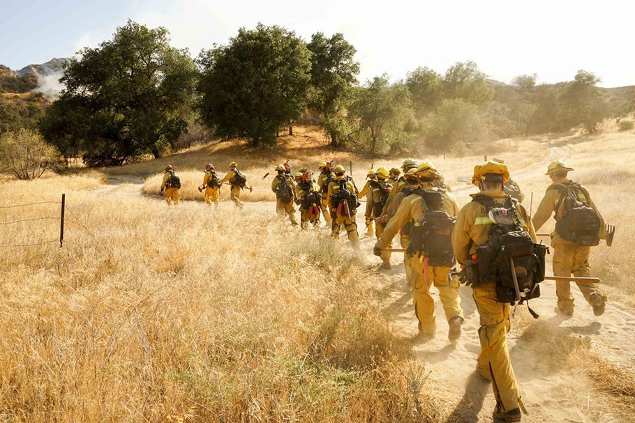 From the Heat of Battle: Lessons In Hydration from Wildland Firefighters and Physiologist Fernando Montes