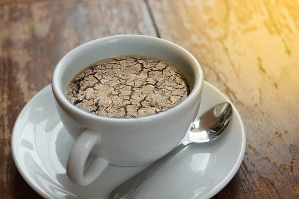 Is coffee dehydrating: Dry and cracked soil in a cup and saucer