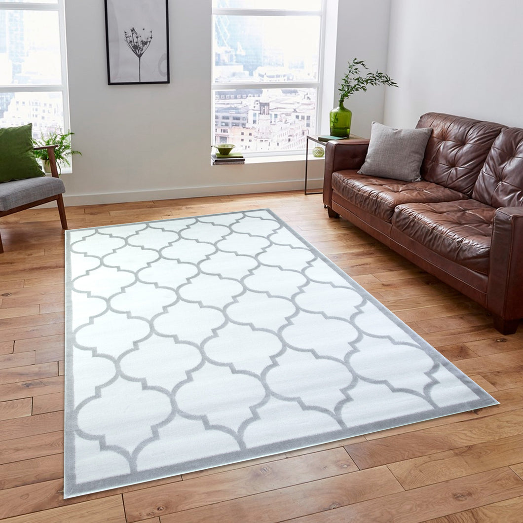 Trendy 5307 White & Silver Area Rug