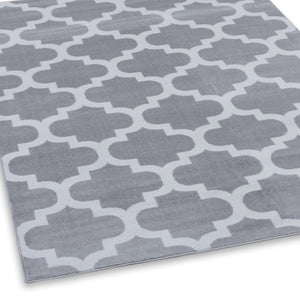 Trendy 5309 Silver & Ivory Area Rug