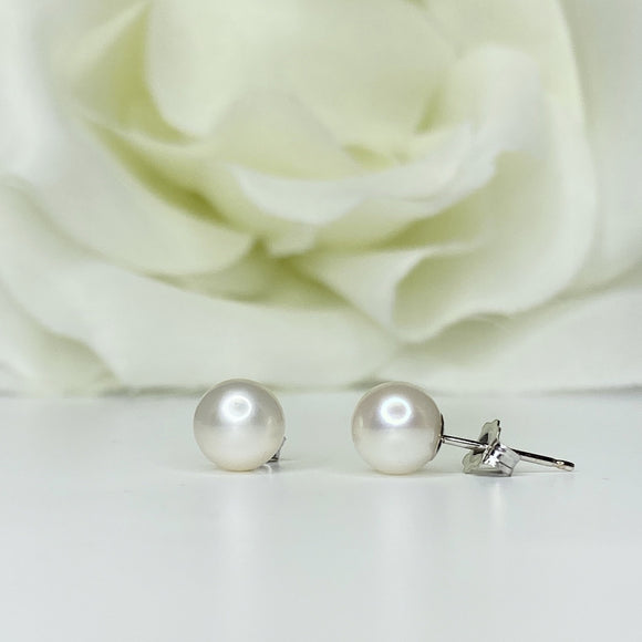6.5mm Freshwater Pearl Studs