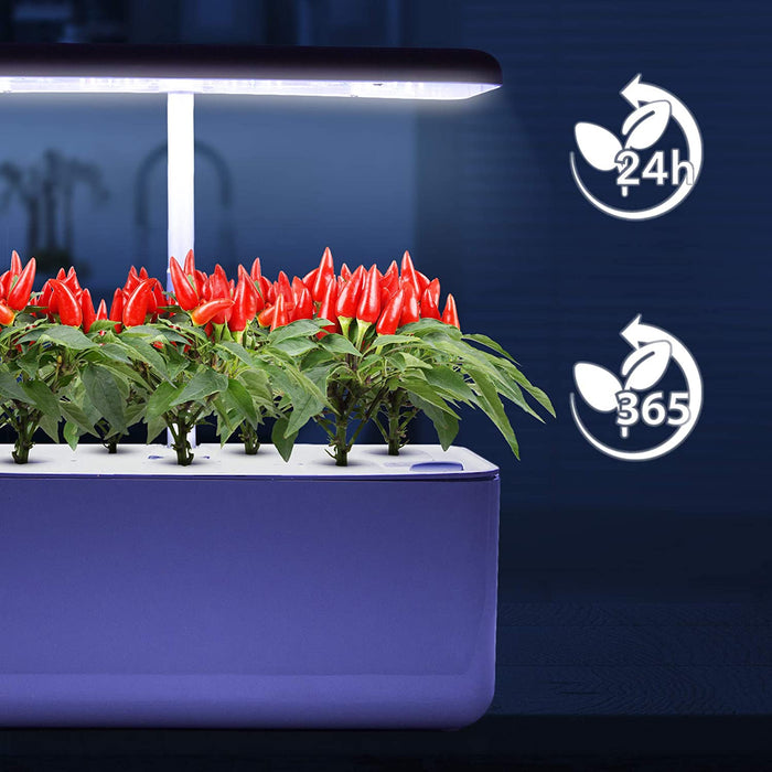 Duronic Hydroponic Growing System GHS37 | Indoor Garden Box with Grow Lamp for 7 Plants or Herbs |70x LED Spectrum Bulbs: White, Red & Blue| 3 Light/Growth Modes | Smart Germination Kit | 25W