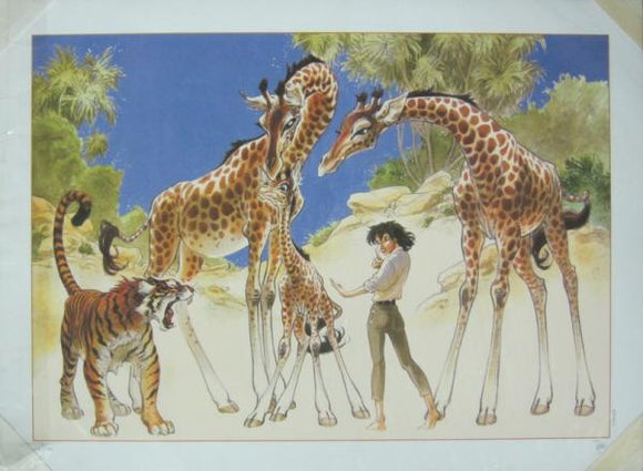 affiche FRANK Zoo - Les girafes
