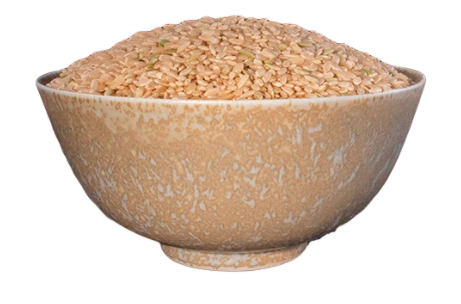 Rice, Sprouted Brown, Medium Grain, Organic 25 lb HB