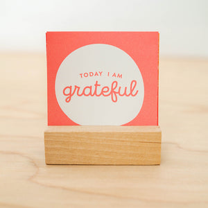 30 Days of Gratitude Prompts