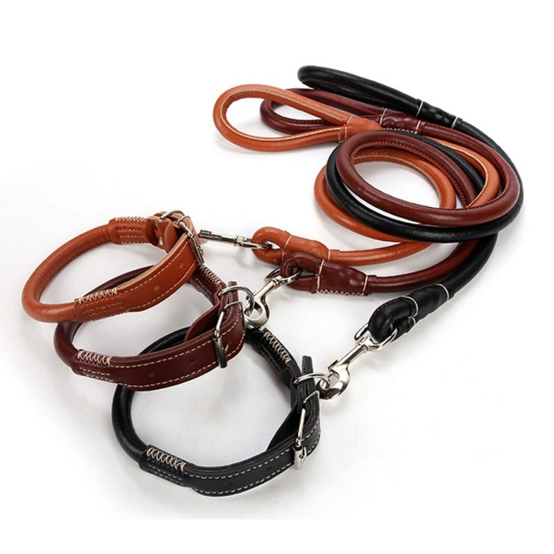 Braided Real Leather Dog Leash & Collar Set