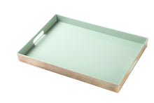 Load image into Gallery viewer, FANTASTIC :) Rectangle Classic Plastic Serving Tray with Matte Finish, Rectangle Straight Design
