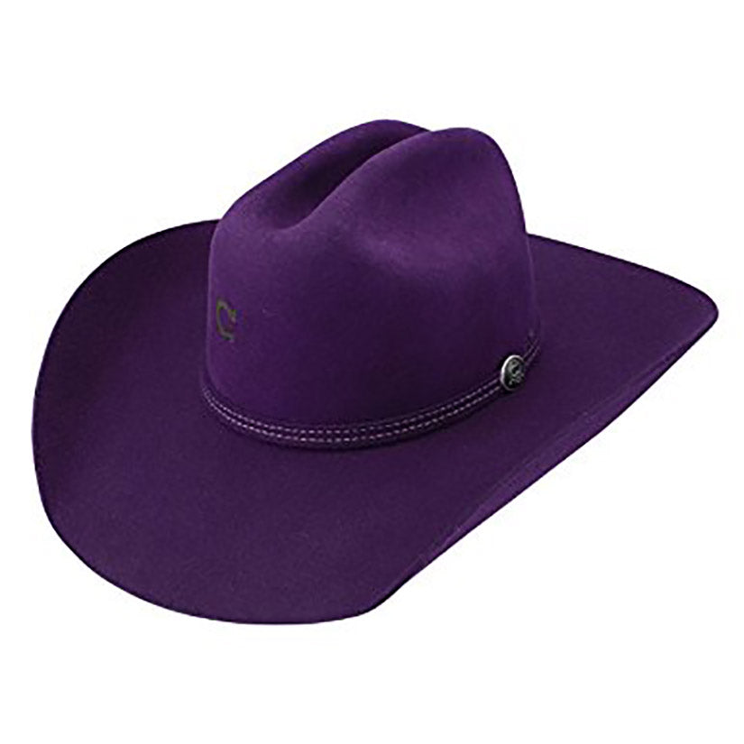 Dime Store Cowgirl, 4X purple