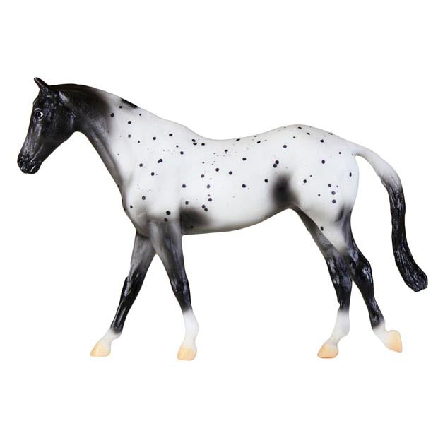 Appaloosa, traditional