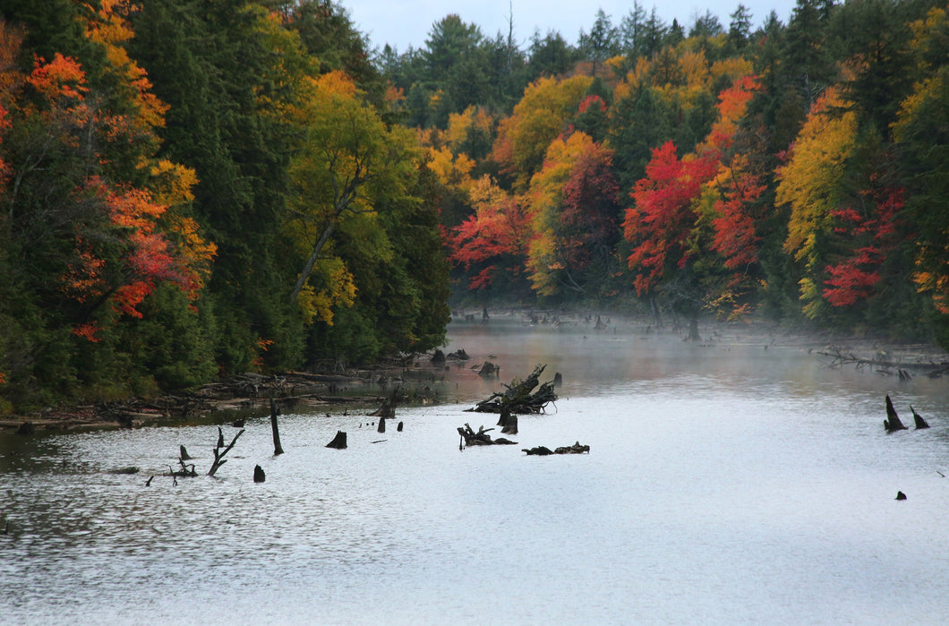 Algonquin in the Fall with silver lakes