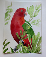 Load image into Gallery viewer, 'King Parrot' - Original watercolour painting - #artistsupportpledge campaign