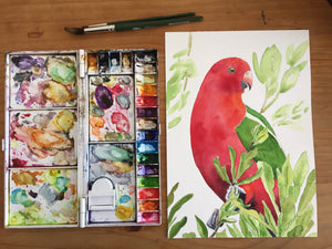 'King Parrot' - Original watercolour painting - #artistsupportpledge campaign