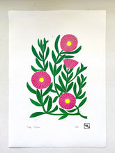 Load image into Gallery viewer, Pigface flower linoprint, native Australian flower art print, Pigface print, handmade in Sydney