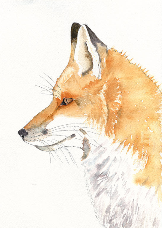 Gift For New Baby Fantastic Mr Fox Kids Room Wall Art Available In M Little Rowan Redhead