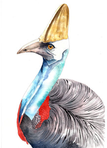 Cassowary - Watercolour Fine Art Print
