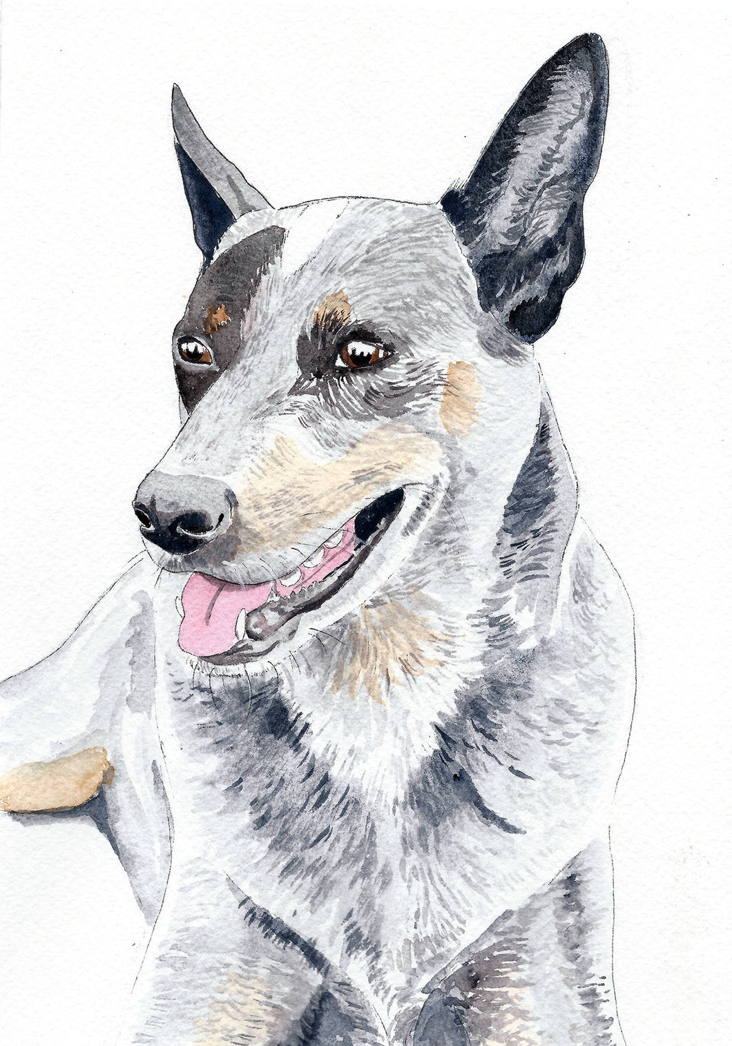 Custom pet portrait, dog portrait, dog watercolour painting