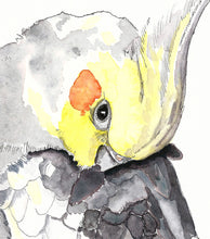 Load image into Gallery viewer, Cockatiel art print, nursery wall art, art above crib, gift for her, wall art kids room, bird art print, cockatiel wall art, watercolour art