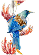 Load image into Gallery viewer, Tui bird wall art, watercolour tui art, New Zealand gift, New Zealand bird, tui painting, blue bird wall art, tui in flax print, tui print