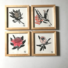 Load image into Gallery viewer, Protea linoprint mothers day gift wall art - 20 cm x 20cm original limited edition blockprints inspired by Australain native flora