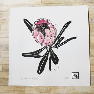 Protea linoprint mothers day gift wall art - 20 cm x 20cm original limited edition blockprints inspired by Australain native flora
