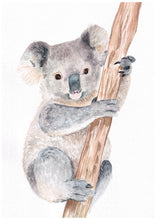 Load image into Gallery viewer, Baby Koala Fine Art Print of Original Watercolour Painting